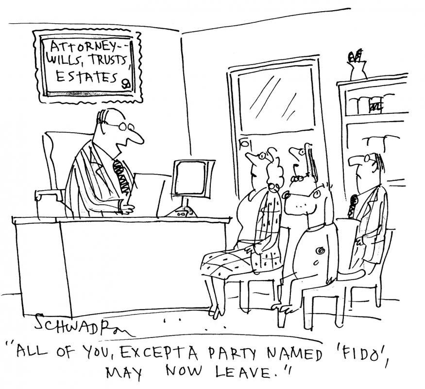 Probate-Cartoon
